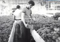 praktyki w Naramowicach lata 70.jpg